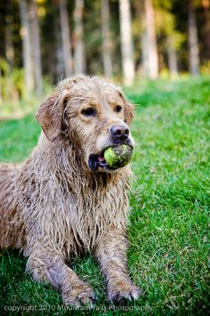 someone's dirty but I still got the ball!!!!