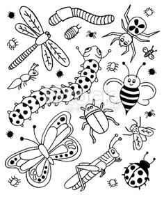 Bug Doodles Royalty Free Stock Vector Art Illustration