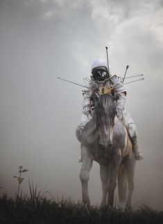 diane likes art — creaturesfromdreams: Don Quixote by Jie Ma
