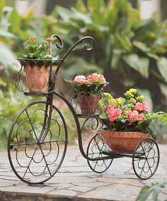 Another great find on #zulily! Tricycle Planter #zulilyfinds