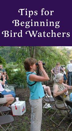 Tips for Beginning Birdwatchers: How to pick binoculars, guide books, birding apps & more. via @tarawildlife