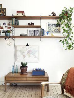 String shleves decor plant walnut