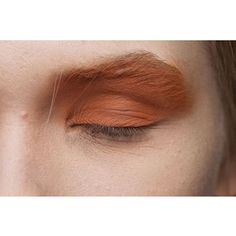 Gorgeous clay deep sienna lids--great for all seasons and perfectly versatile for blondes and brunettes