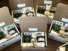 Sprout the gift of giving! Eco-friendly, natural gift boxes for various occasions. Every box includes a succulent or air plant and up to two personal gifts. Seed Bombs, Leaf Logo, Pottery Designs, Easter Gift, Gift Boxes, Giving, Nursery Ideas, Sprouts, Diy Gifts