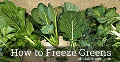 How to Freeze Greens - Idiot's Kitchen Don't let those leafy greens from the garden go to waste! Kitchen Recipes, Freeze, Food Ideas, Healthy Living, Herbs, Favorite Recipes, Vegetables, Garden, Plants