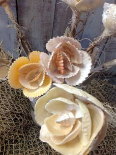 Seashell Flowers make great Wedding Flowers! Straight from a Mermaid's Garden. These beautiful handmade flowers are made from natural seashells. All colors are