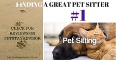 #Tiptuesday - Finding a great #petsitter tip no.1 #petboarding #happyhaven #peaceofmind