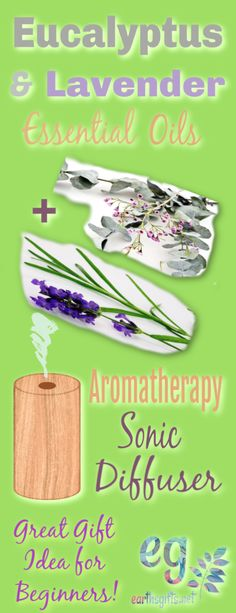 Aromatherapy for Beginners Natural Toothpaste, Natural Beauty Recipes, Gum Health, Wild Edibles, Healthy Oils, Aromatherapy Oils, Natural Cleaning Products, Rv Living, Frugal Living