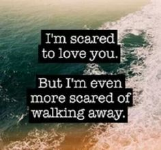 I'm scared to love you.  But I'm even more scared of walking away