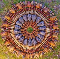 land art- if I have my own land one day, I'd like to create pieces throughout, some would last, others would fade, but upon exploring you'd find so much