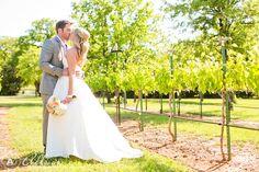 LauraBryan Wedding Lost Oak Winery AllisonDavisPhotography 15 Laura & Bryan:Wedding at Lost Oak Winery in Burleson, Texas