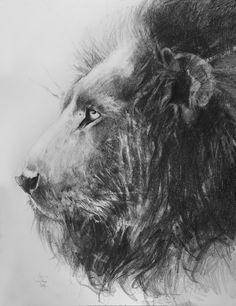 lion,pencil