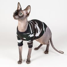 Sphynx cat clothes Cat Camo Shirt Thin Thermal Long Sleeved Top, cat pajamas waffle cotton cat clothes or Dog Clothes light long sleeves by SimplySphynx on Etsy