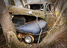 The story behind the old abandoned truck revealed by locals of small town Calabogie, Ontario, CA - 5x7 Fine Art Photograph - Rusty Mercury on Etsy, $8.00