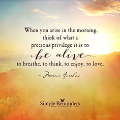 """""""When you arise in the morning, think of what a precious privilege it is to be alive — to breathe, to think, to enjoy, to love."""" —Marcus Aurelius"""