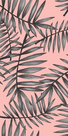 47 Ideas For Wallpaper Celular Fofo Feminino Flores Wallpaper Pastel, Plant Wallpaper, Flower Phone Wallpaper, Tropical Wallpaper, Phone Screen Wallpaper, Cute Patterns Wallpaper, Iphone Background Wallpaper, Trendy Wallpaper, Tumblr Wallpaper