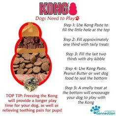outdoor dog toys,dog toys interactive,smart dog toys,dog toys for chewers Dog Treat Recipes, Dog Food Recipes, Outdoor Dog Toys, Kong Dog Toys, Dog Enrichment, Puppy Treats, Wet Dog Food, Homemade Dog Treats, Dog Care