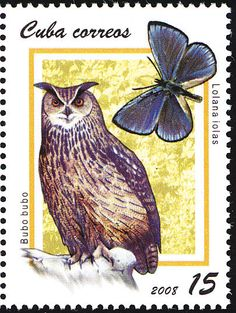 Eurasian Eagle Owl (Bubo bubo) Release date : 2008 Barn Owl (Tyto alba) Release date : 2008 Great Grey Owl (Strix nebul. Old Stamps, Vintage Stamps, Vintage Comic Books, Vintage Comics, Eurasian Eagle Owl, World Birds, Great Grey Owl, Paper Owls, Animal Totems