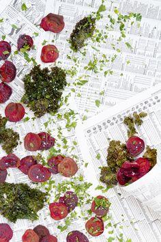 Chips de betteraves et de kale cuits au four | Oven baked beet and kale chips