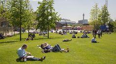 Lewis Cubitt Park, King's Cross