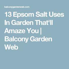 13 Epsom Salt Uses In Garden That'll Amaze You | Balcony Garden Web
