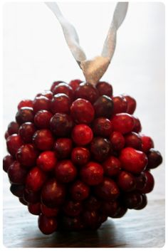 11 {Inedible} Ways to Use Cranberries - Dukes & Duchesses