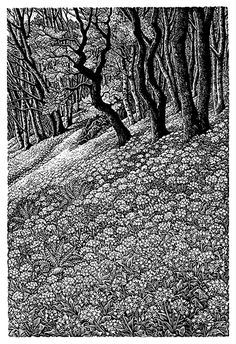 """<h2>Woodland with Wild Garlic</h2> <span class=""""h5""""><strong>Artist:</strong> Sue Scullard</span> <span class=""""h5""""><strong>Price:</strong> £70</span> <span class=""""h5""""><strong>Dimensions:</strong> 150 x 100 mm</span>"""