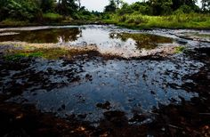 """By Dopse Eberefiak According to Martin Lurther King Jnr """"If a section of the environment is polluted or mistreated we all suffer. Everything is connected whether directly or indirectly"""". Unarguably environment just as the economy remains quite essential to every nation. The environment harbors the natural resources for economic development. In Nigeria we have made good exploitation of our environment to the benefits of our economy. Prior to the discovery of oil in commercial quantity Nigeria…"""