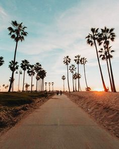 Los Angeles California by Debodoes California Feelings California Dreamin', Los Angeles California, California Palm Trees, Venice Beach California, California Pictures, California Honeymoon, California Camping, Places To Travel, Places To Visit