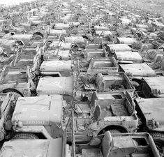 vintage everyday: Jeep Graveyard on the Island of Okinawa, Japan, 1949 Old Jeep, Jeep Cj, Military Jeep, Military Vehicles, Military Surplus, Military Humor, Old Lorries, Vintage Jeep, Willys Mb