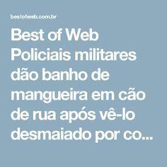 Best of Web Policiais militares dão banho de mangueira em cão de rua após vê-lo desmaiado por conta do calor
