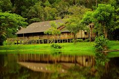 The cities of Malaysia have so much excitement and wonder, but it is incomparable to the mystic and awe inspiring tradtional Iban longhouses and the people that live in them in Sarawak.  #MalaysiaAus   #AirAsia