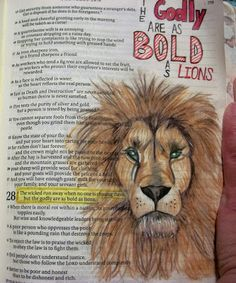I have another Bible Art Journal page to share today. I looked at a picture to draw this Lion and colored him with colored pencils. Lion Bible Verse, Bible Verse Tattoos, Scripture Art, Bible Art, Bible Verses, Scriptures, Bible Notes, Art Journaling, Bible Study Journal