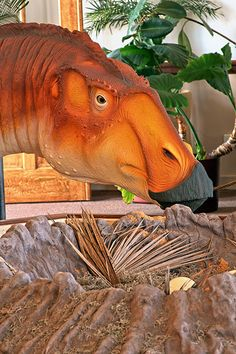 """""""Salad is delicious"""" Missouri dinosaur has lunch break at the Bollinger County Museum"""
