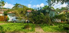 What Hurricane Irma Has Taught Me About the Importance of Cash Reserves  ||  Not only am I faced with half of my tenants having payment issues, but I also have elevated expenses related to tree pick-up and minor structural damages. https://www.biggerpockets.com/renewsblog/hurricane-irma?utm_campaign=crowdfire&utm_content=crowdfire&utm_medium=social&utm_source=pinterest