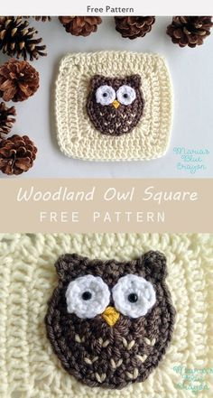Crochet Granny Square Patterns Woodland Owl Square free crochet pattern - Using this Woodland Owl Square free crochet pattern, you can make blankets, quilts, and more! Make one now with the free pattern provided by the pattern below! Granny Square Crochet Pattern, Crochet Squares, Crochet Granny, Crochet Blanket Patterns, Crochet Motif, Crochet Designs, Granny Squares, Crochet Owl Applique, Pixel Crochet Blanket