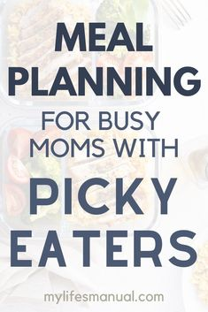 Meal Planning Binder and Beginners Guide for Busy Moms With Picky Eaters Meal Planning Binder, Menu Planning Printable, Family Meal Planner, Budget Meal Planning, Budget Freezer Meals, Food Budget, Easy Meals, Inexpensive Meals, Budget Recipes