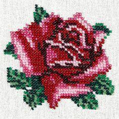 319007-81d2f-55623378-m750x740-udb20c.jpg 450×450 piksel