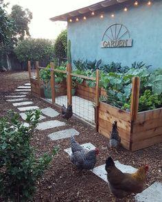 garden fence garden beds diy how to build cheap Backyard Vegetable Gardens, Veg Garden, Vegetable Garden Design, Garden Fencing, Edible Garden, Outdoor Gardens, Vege Garden Ideas, Hanging Herb Gardens, Brick Garden