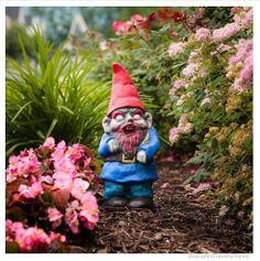 Zombie Yard Gnome, $24.99. Shut Up and Take My Money.