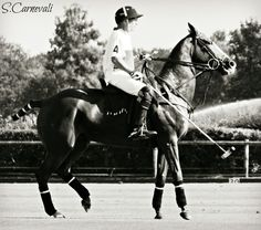France Open of Polo