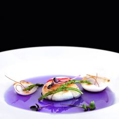 red cabbage consomme with seared scallops