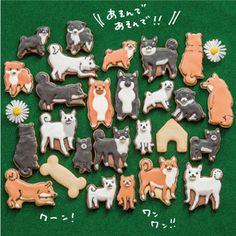 食べたいくらい君が好き! 柴犬まみれアイシングクッキーの会(年間予約コレクション)