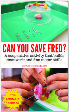 Can You Save Fred? Can You Save Fred? Can You Save Fred? Kids will love this cooperative activity that builds teamwork, planning, communication, and fine motor skills. Teamwork Activities, Cooperative Learning Activities, Communication Activities, Cooperative Games, Activities For Teens, Stem Activities, Science Games For Kids, Indoor Activities, Games For Learning