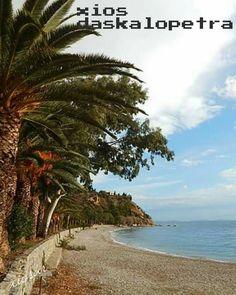 Chios Greece, Summer Ideas, Funny Jokes, Greek, Island, Beach, Water, Outdoor, Gripe Water