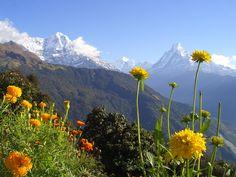 Fishtail Mountain from Gandruk (Annapurna Region)