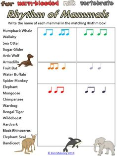 The Rhythm of Mammals! Piano Lessons, Lessons For Kids, Music Lessons, Music Maniac, Music Worksheets, Music Education, Health Education, Physical Education, Music Classroom