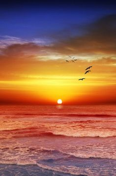 Victoria Coast Sunset, Victoria, Australia,