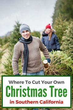 Are you searching for that perfect Christmas tree?  Check out this list of 15+ Places to Cut Your Own Christmas Tree in Southern California!  From Santa Barbara to San Diego and everywhere in between, there is at least one Christmas tree farm within an hour's drive of your home.  A few of the farms also offer field trips for students.