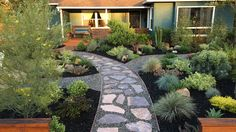 Grass-free landscaping